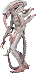 Фигурка Aliens - Xenomorph Albino Drone
