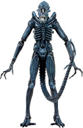 Aliens - Xenomorph Warrior (Blue)
