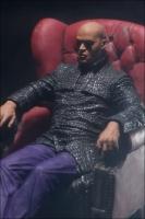 Matrix Series 2 - Morpheus