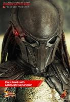 Predators - Falconer Predator 1/6
