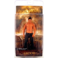 The Twilight: New Moon - Jacob